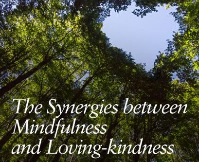 The Synergies between Mindfulness and Loving-kindness