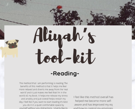 Aliyas toolkit.PNG