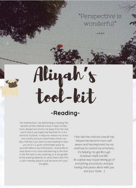 Aliyas toolkit.PNG