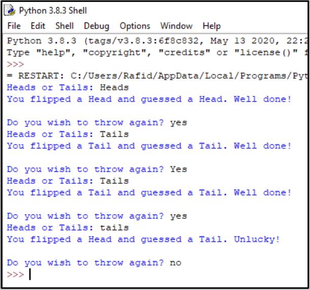 Computer programming 4.PNG