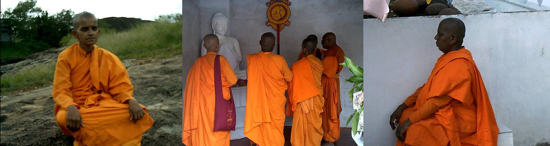 bhikkuni_sanga_banner.jpg