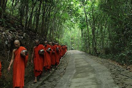 banner - walking meditation 2.jpg