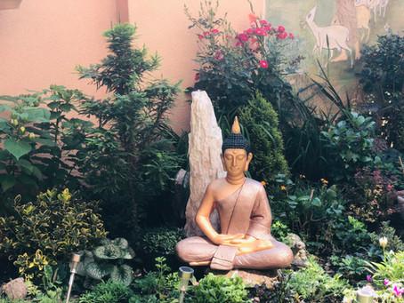 Rozhovor se ctihodnou bhikkhunī Visuddhi a novinky z Karuṇā Sevena