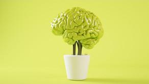 Psichiatra, neurologo e psicologo:  quali differenze?