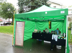 Thornhill Village Festival Booth