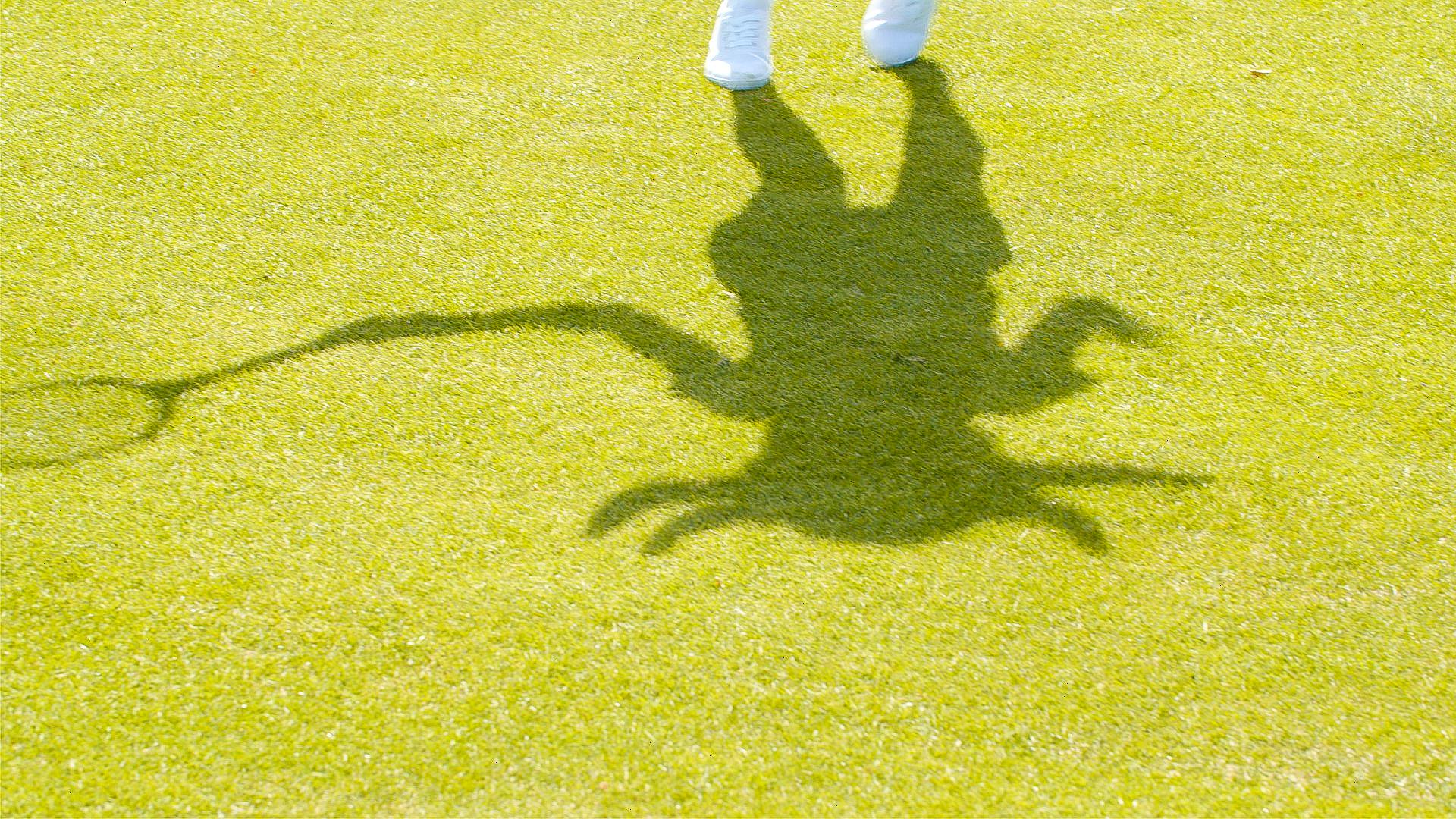 beast shadow-2