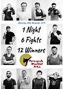 Fight Night Poster.jpg