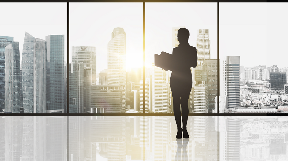 Corporate background wt lady figure.png