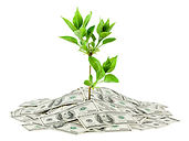 Boyd Investment Assessment