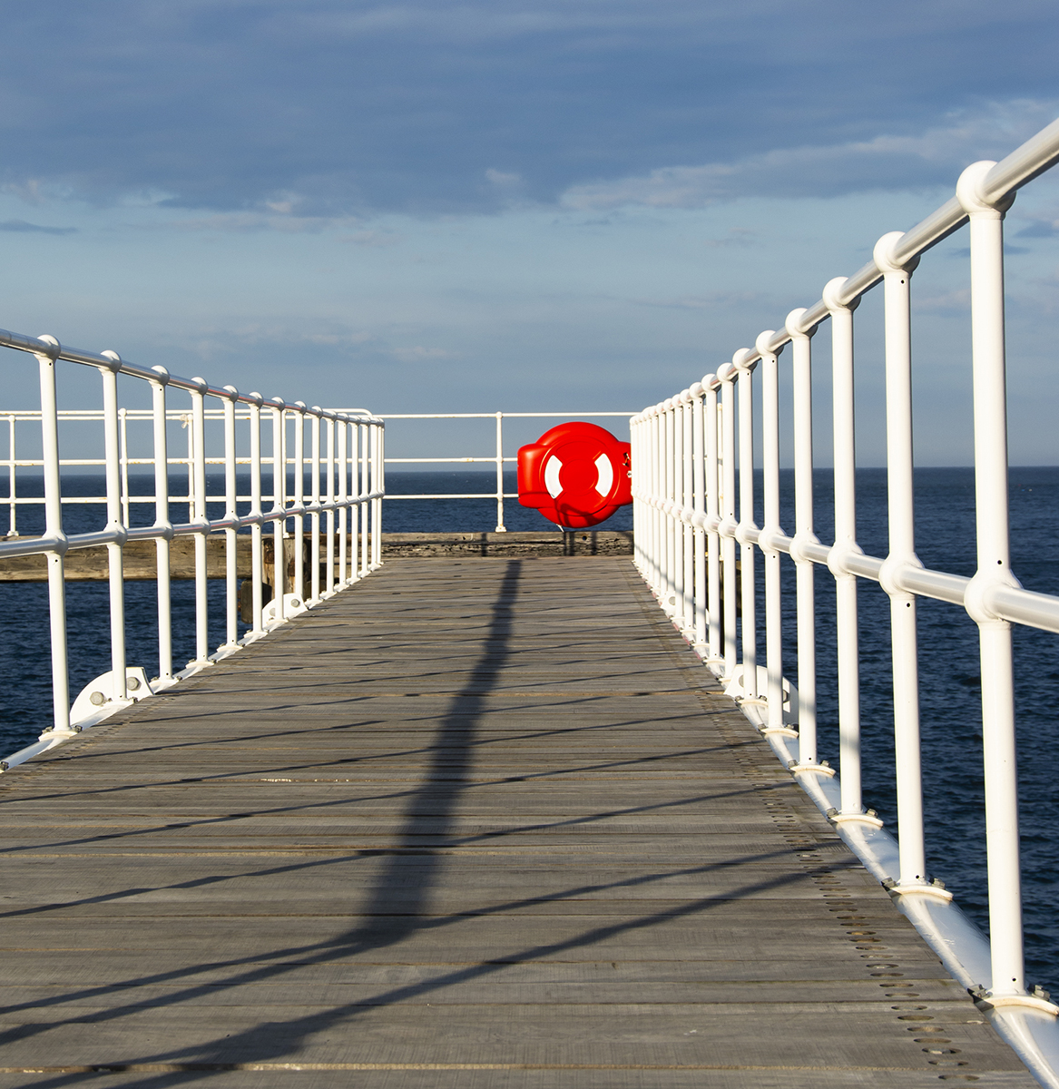 6. the bridge.sue hogarth
