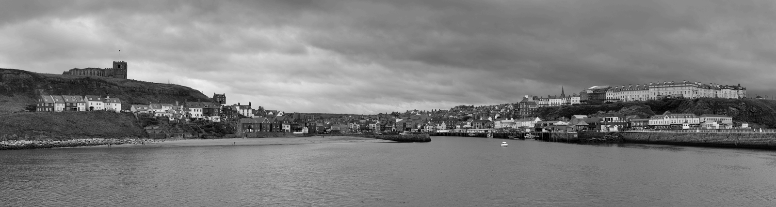 4.whitby panorama.nick webster