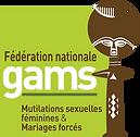 Logo-GAMSHteDéfinitionPNG.png
