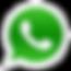 logo wpp.png