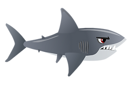 Shark_1 - Copy.png