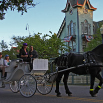 Cape May Carriage Rides