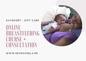 Online Breastfeeding Course + Consultati