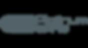 Platinum Spas Logo