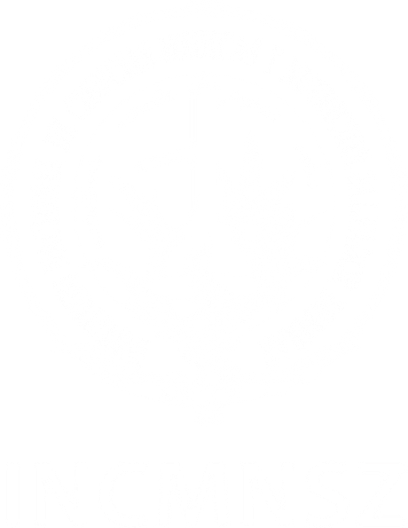 logo-blanco-incmnsz 2.png