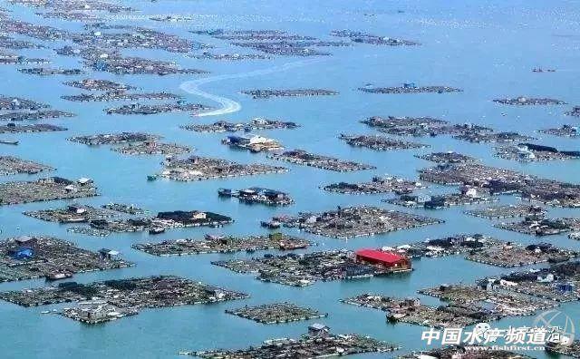 福建清退超規划水產養殖超268309畝