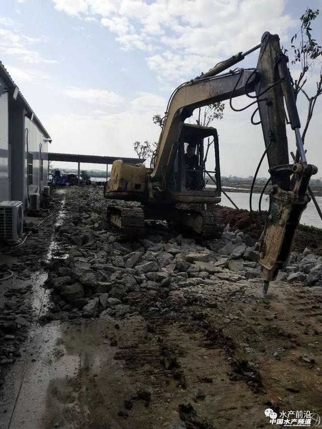 中山養殖戶挖掉養殖場的水泥路