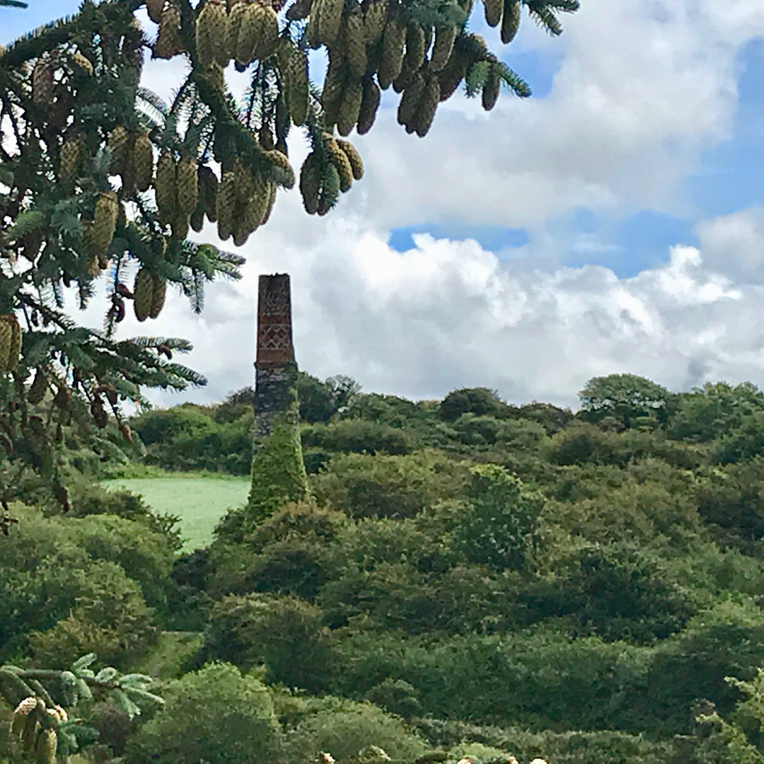 View of Wheal Metal from the balcony at Scott's Cottage
