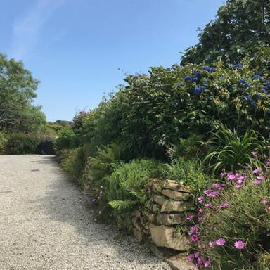 Scott's Cottage garden