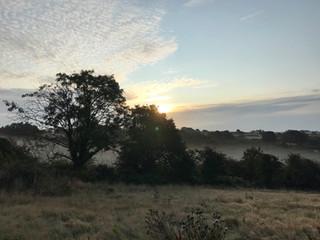 Beautiful misty morning at Hope Farm.jpg