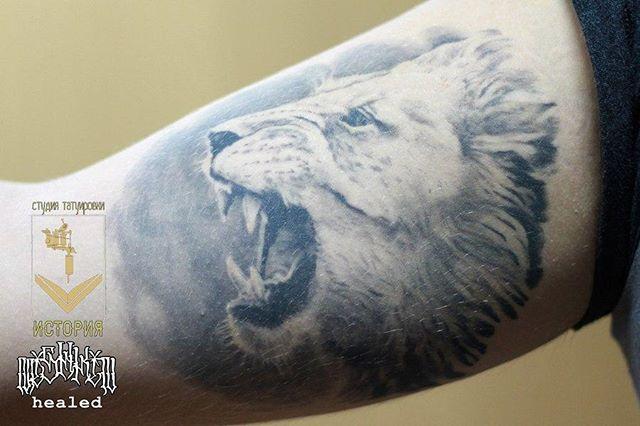 Полностью заживший король - лев 🐅_Мастер Максим🔥_☀1 сеанс☀_Эскиз из интернета 🤓_Для консультации