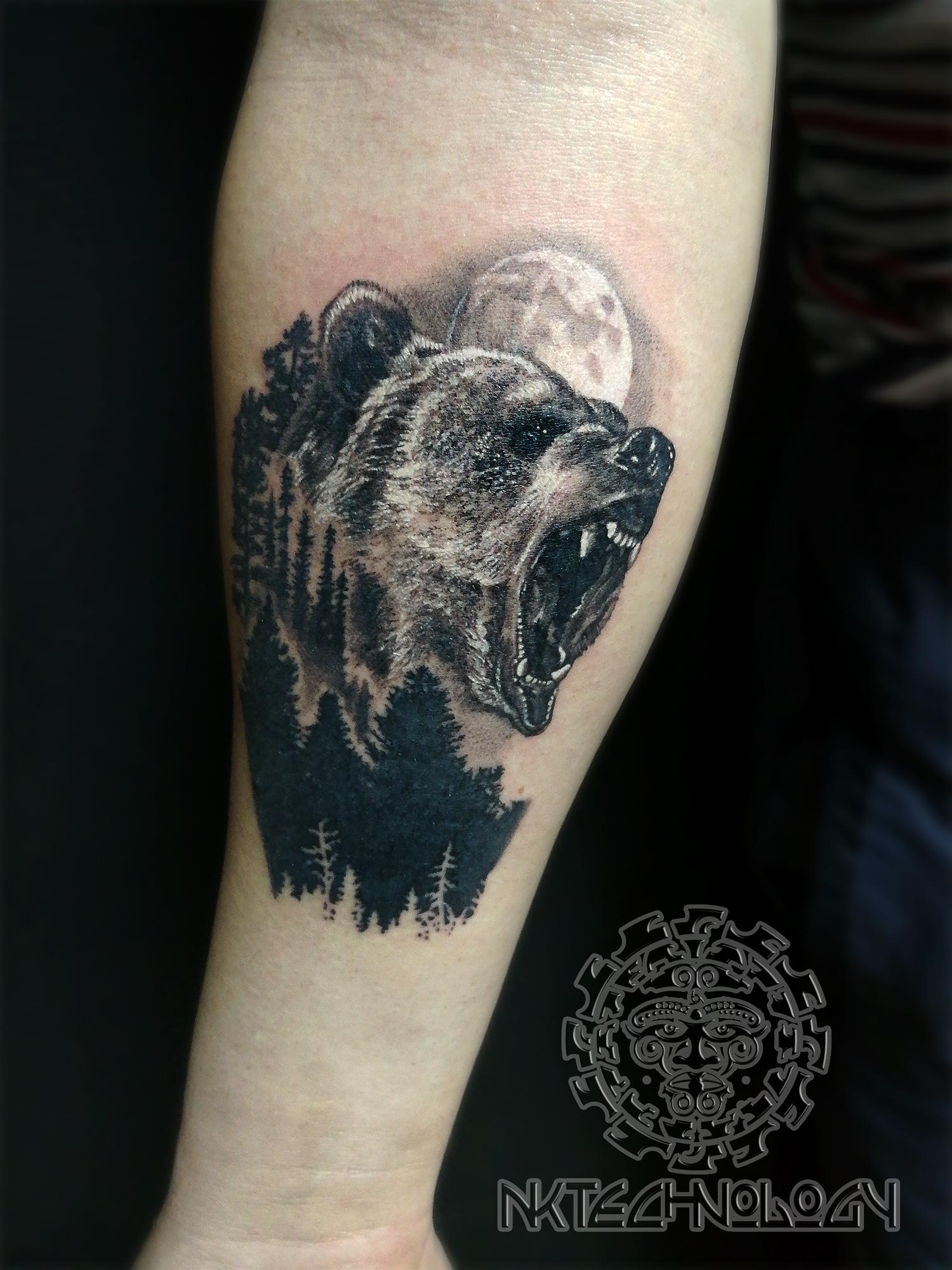 медведь 1 сеанс