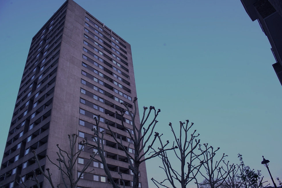 Photo: Outrun London, photographer, Blackfish Productions. A high rise block of flats looms above a row of gnarled trees, against a dawn blue sky.
