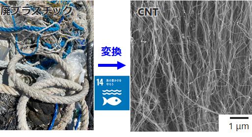 海洋プラごみからカーボンナノチューブへの高効率変換に成功