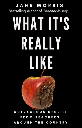 ebook what it's really like cover.png