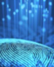 biometric_security2.jpg