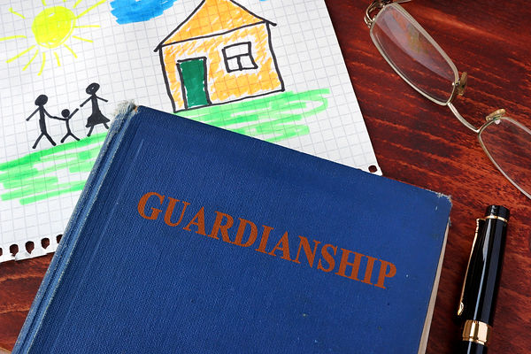 Book with title Guardianships and childr