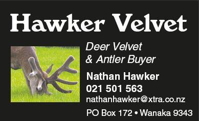 Hawker logo 2014.JPG