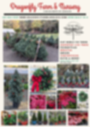 HolidayProductsFlyer.png
