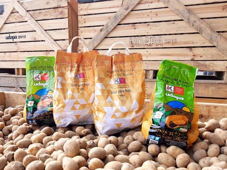 Udapa inicia una nueva campaña de recogida de patata de Álava
