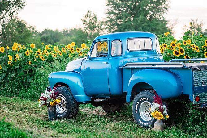 Sherman Farm - Sunflower Stroll