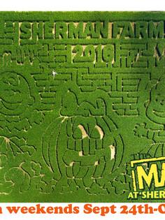 2016 Maze reveal.jpg