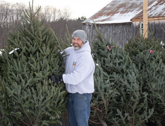 Christmas tree jeff medium - Copy.jpg
