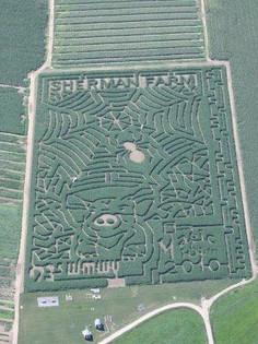 2010 aerial crop small.jpg