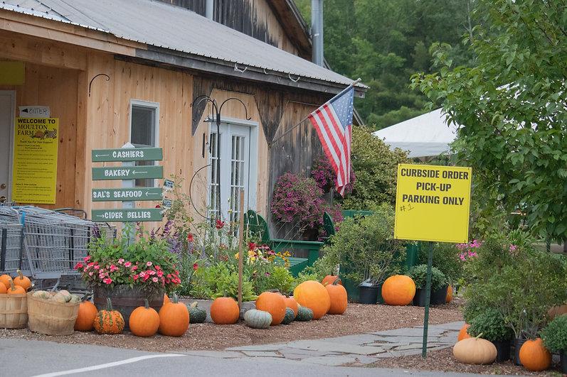 mf signs falg curbside sign pumpkins 2.jpg