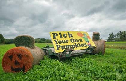 pick your own pumpkin sign.jpg