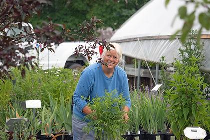 sue blue garden center smile.jpg