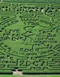2007 old man maze.jpg