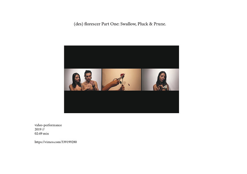 DORA_NASPOLINI_Dossier artistique-10_pag