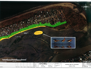 OCEL Southshore Inundation Protection Levee PLAN