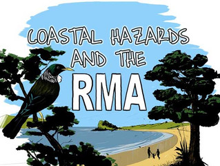 The legal framework relevant to coastal hazards