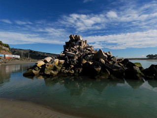 Christchurch City Council considers changing coastal hazard LIM listings