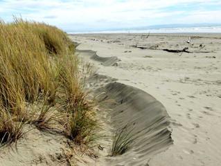 Community invited to provide feedback on Coastal Hazard Report